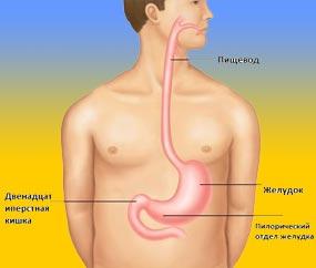 Дуоденит лечение