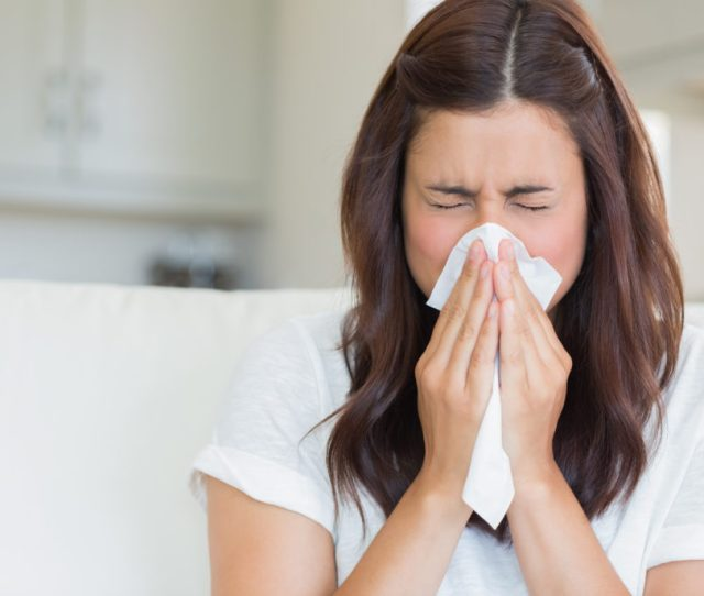 The Difference Between Hay Fever A Cold
