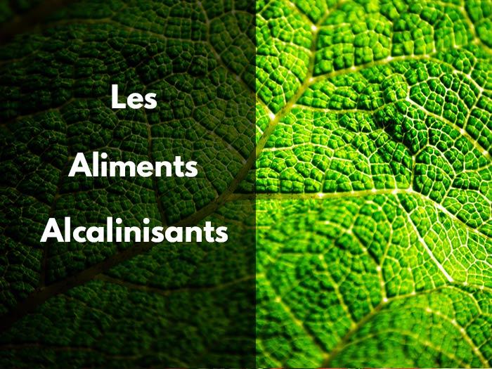 La nourriture;  alcalin;  Agents alcalinisants;  Acide;  équilibré