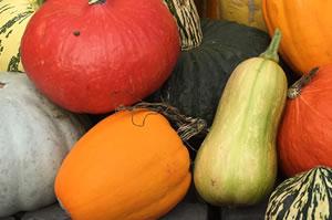 Pumpkin Spice Shower Gel a naturally moisturising shower gel