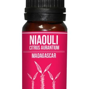 Niaouli Essential Oil Melaleuca viridiflora properties and buy online
