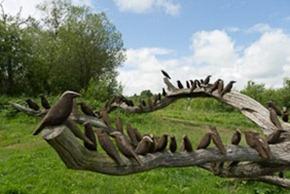 Starling Sculpture