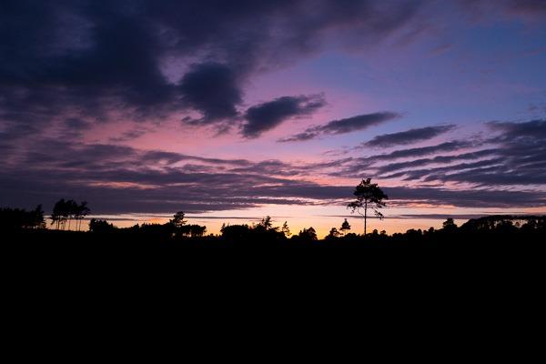 Arne at dusk