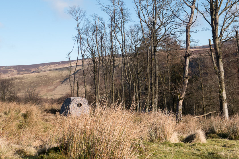 ...... and watching over the Crossbill's regular drinking pool a stakeout was taking place