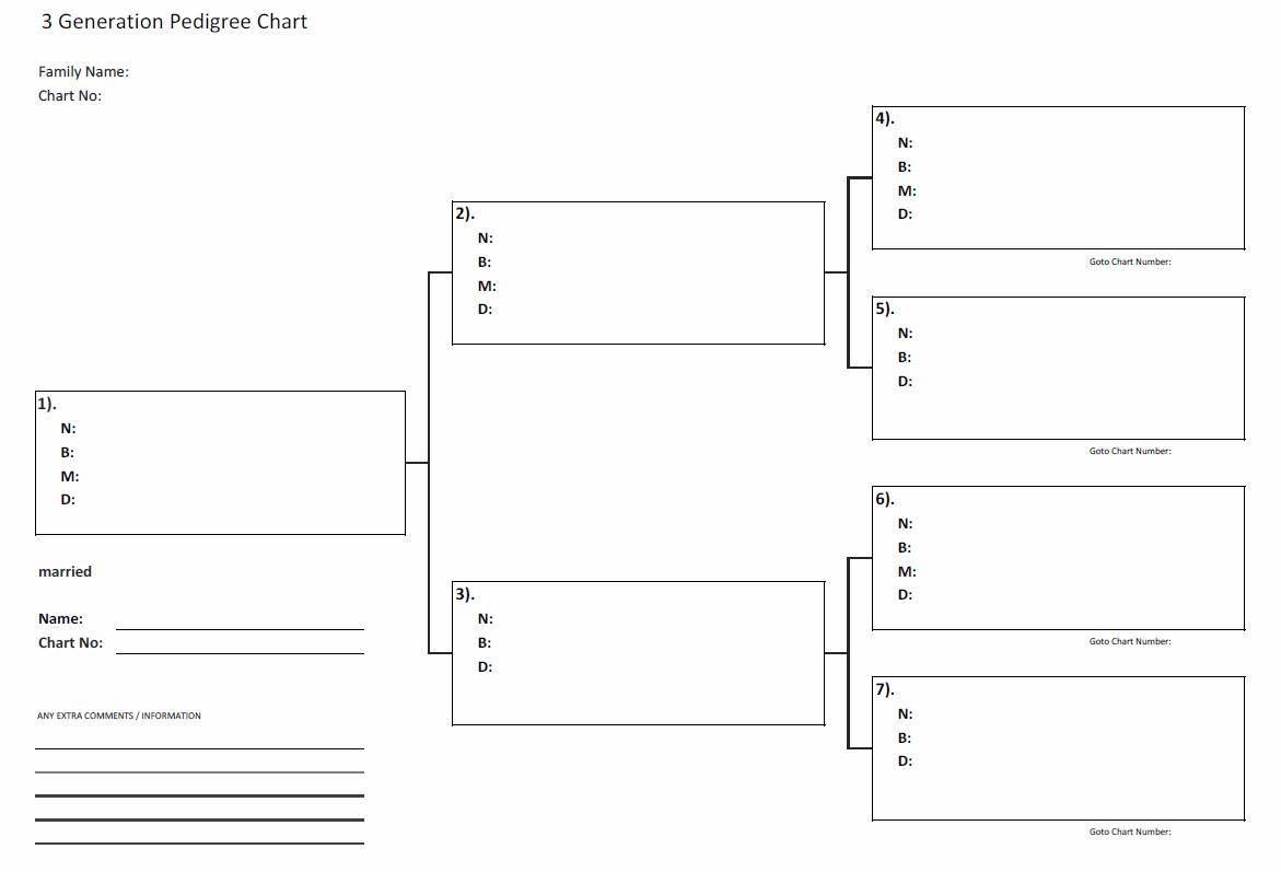 Excel Genealogy Spreadsheet Family Tree