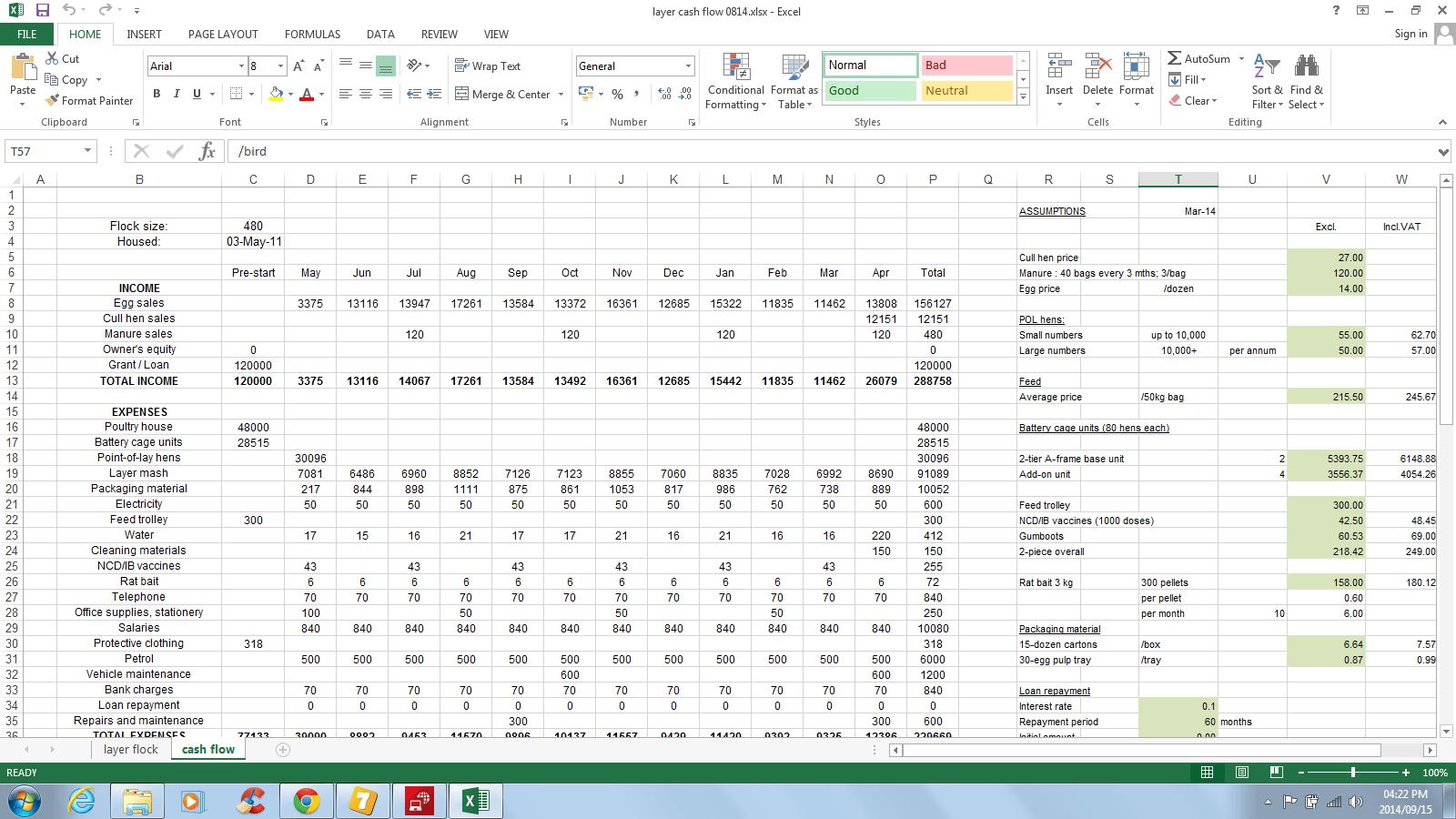 Cash Flow Projections Spreadsheet