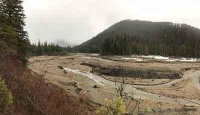 sediment_stumps_image1