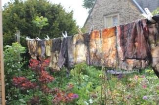 washing line squares
