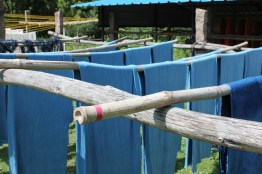 indigo dyed cotton drying on bamboo