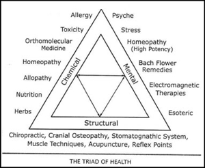 Applied kinesiology triad of health