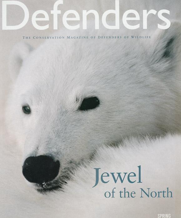 2004 Spring Defenders