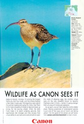 Cover of Canon Ad