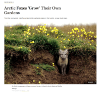 Cover of 2016 May National Geographic News