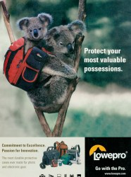 Cover of Lowepro Ad