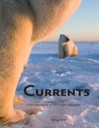 Cover of 2013 Spring NANPA Currents