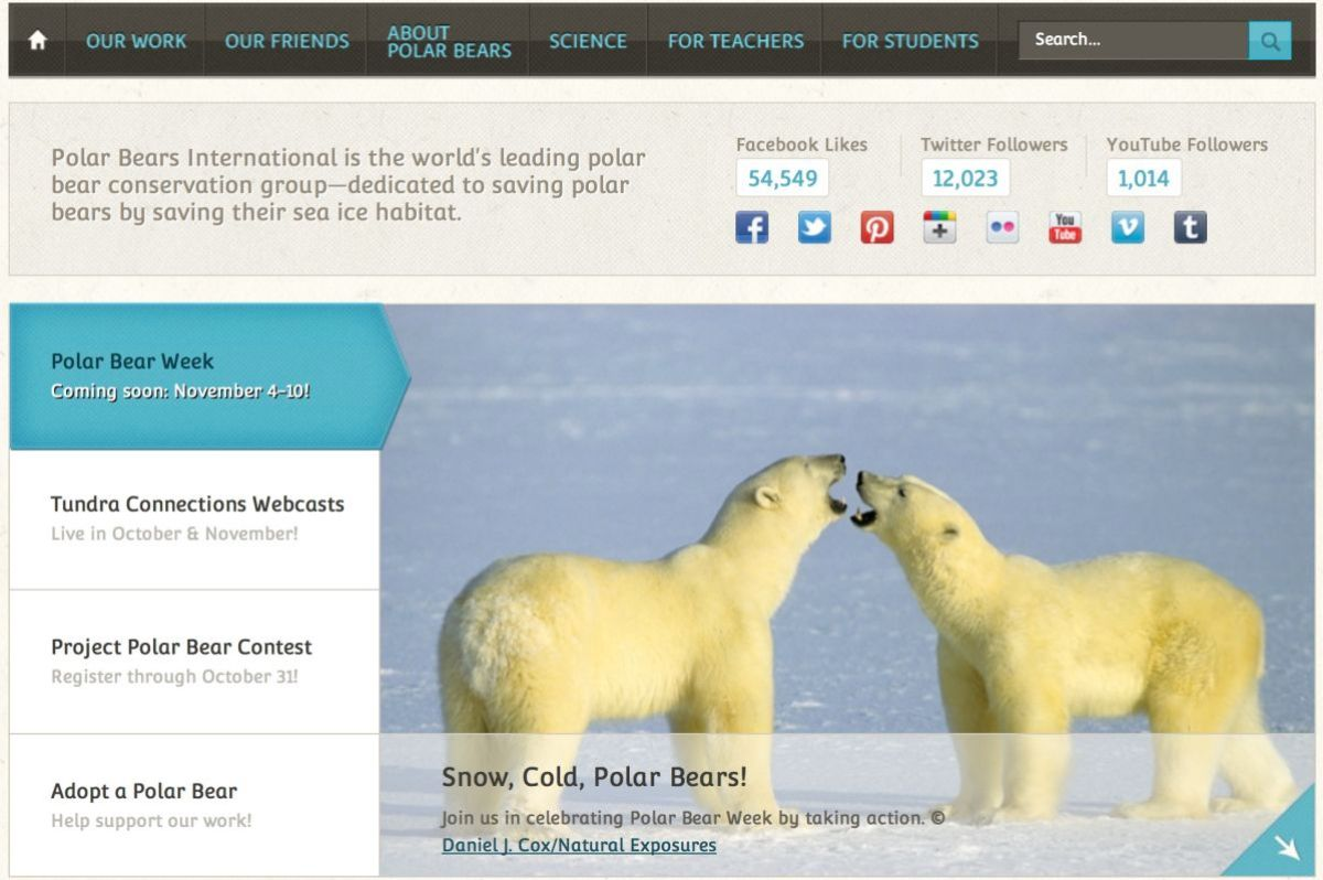 Visit PBI's Tundra Connection web site to see the amazing list of web casts  highlighting the arctic and the animals such as the polar bear that live there.