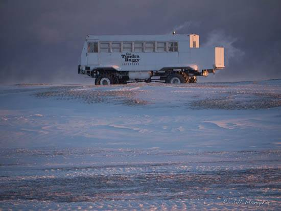 A tundra buggy out at Cape Churchill. Manitoba, Canada