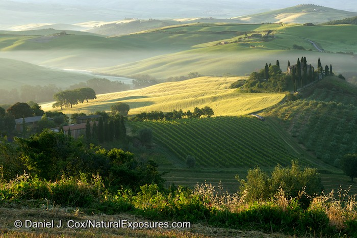 The rolling Tuscan countryside in early morning light. A light ground fog hangs in the distance. Lumix GH4 with  45-175mm lens