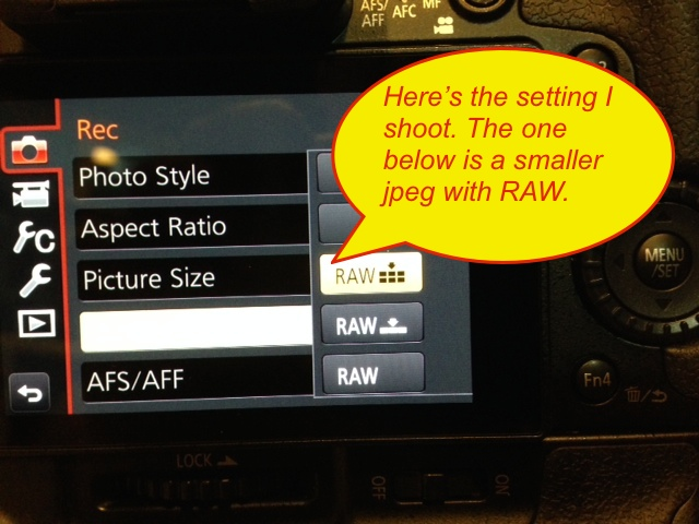 Photo of what you'll be looking for in the GH4 menu.