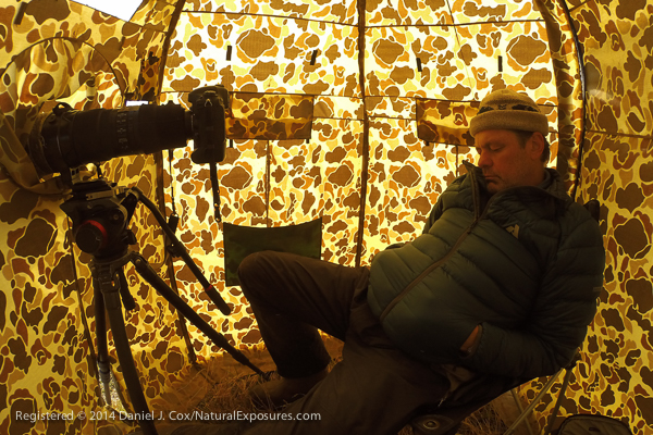 Tings can get pretty boring when you spend up to twelve hours a dray in a hide. I dozed off for a short period and my remote camera set to document inside the hide fought me snoozing. Good thing I work for myself.  GoPro Hero Black edition.