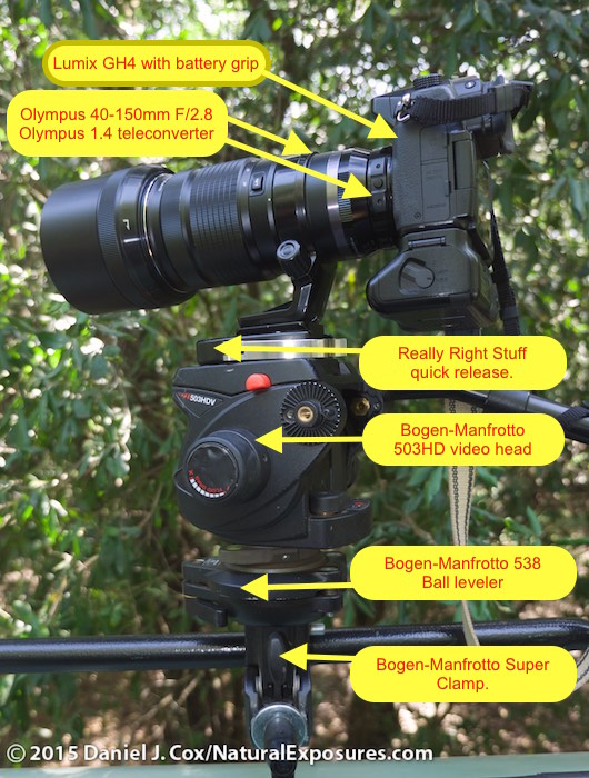 A more detailed close-up of the setup I used while in Kenya. Photo by Tanya Cox using Lumix  GH4 with 12-35mm F/2.8. ISO 200