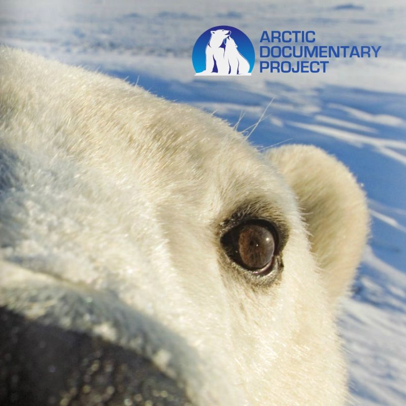 Take a look at the Arctic Documentary Project booklet that tells you more about the ADP mission.