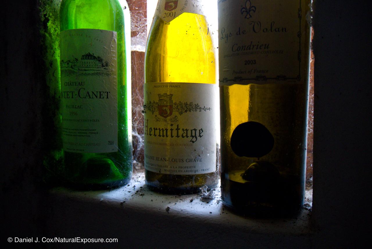 D595541, celler, wine, Spain,