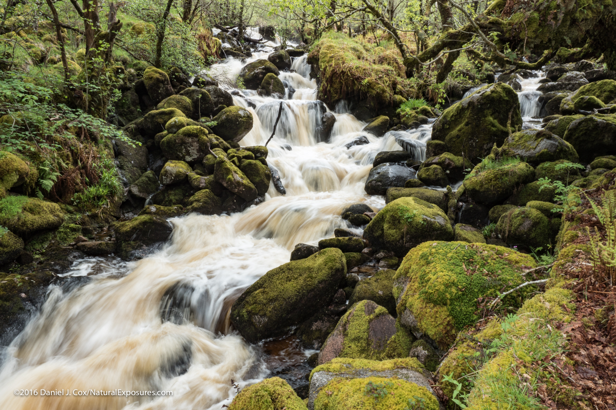 A an extremely full stream on the Isle of Mull topped off by the heavy rains we had for a couple of days. Lumix GX8 ISO 100