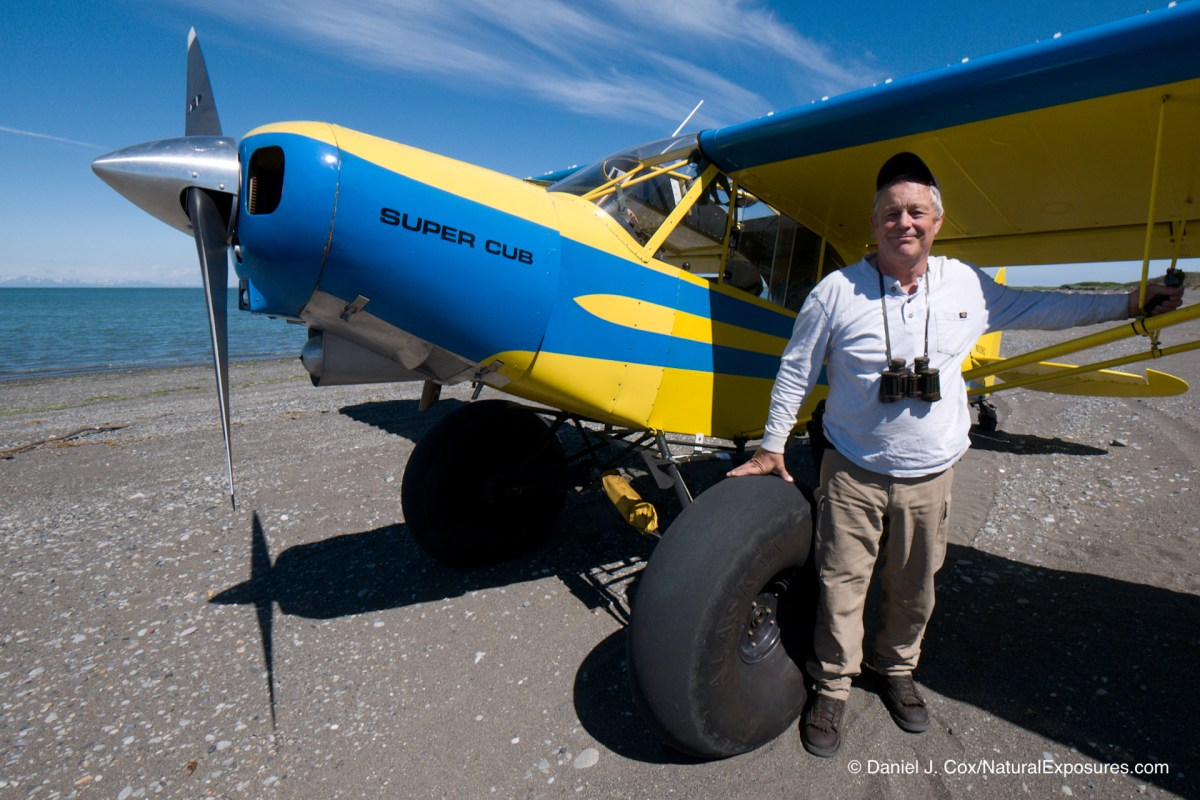 Brown Bears Alaska Bush Plane Adventure