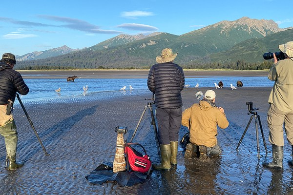 Photo for 2022 Alaska Brown Bear Photography Tour I