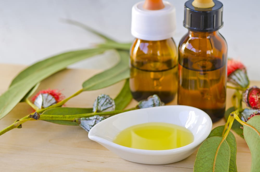 11 Health Benefits of Eucalyptus Essential Oil