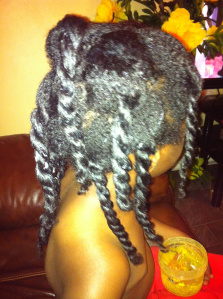 Natural Hair Growth The Stages Naturalhairess