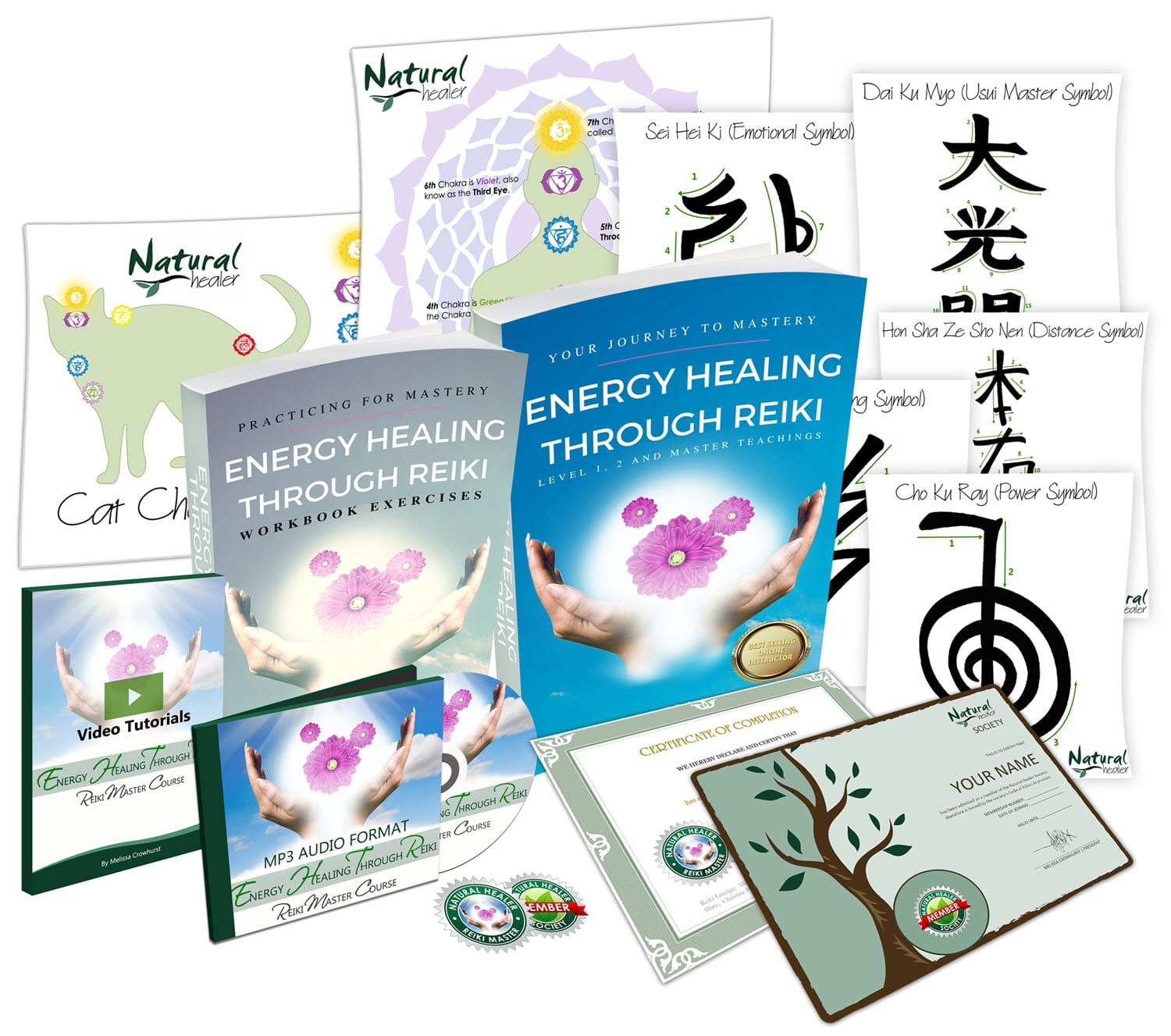 Online Reiki Master Certification Course v2018small