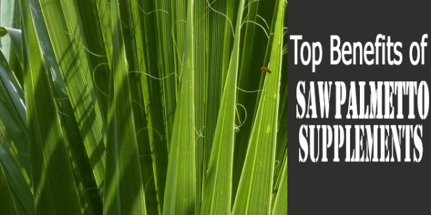 Top-benefits-of-Saw-Palmetto-Supplements