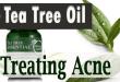 Use Tea Tree Oil for treating Acne