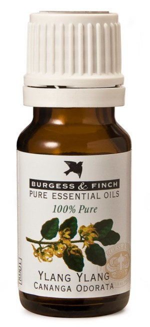 Burgess & Finch Ylang Ylang Oil