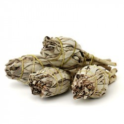 White Sage Mini Sticks 10-12cm