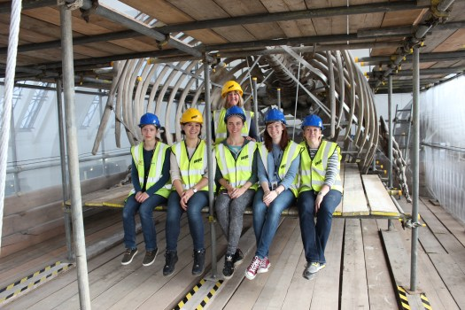 Photo of Team Whale sitting on the scaffolding in front of the skeleton