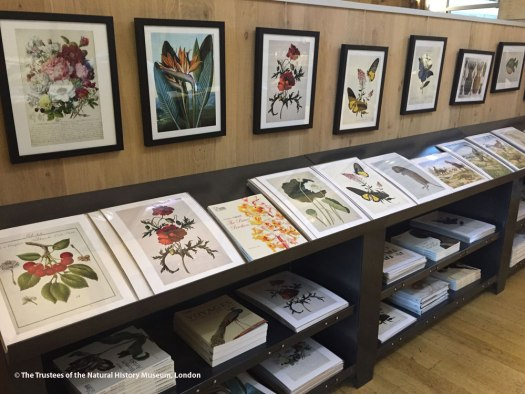 Photo showing prints and books created using the archival artworks in our collections