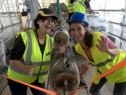 Photo showing two conservators smiling as the vertebra is being removed