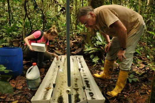Photo showing Beulah and Terry crouching and looking into the base of the trap to examine the collected specimens