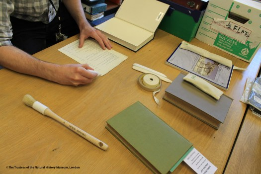 Photo showing one of the staff working on a page before reattaching it to a book, with tools and other materials on the desk in front of them.
