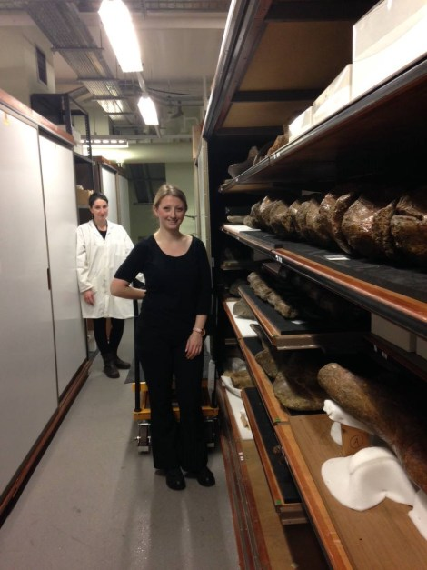 Fossil Fish curator Emma Bernard and Assistant Fossil Mammal curator Roula Pappa