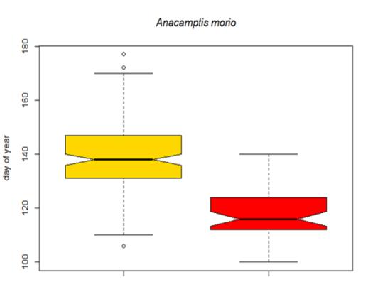 Image of a box plot graph