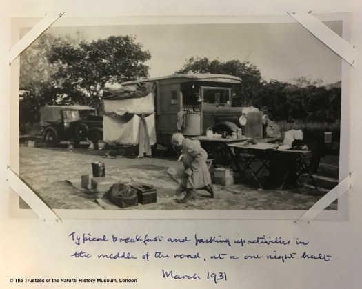 Black and white archival photograph showing two vehicles set up for camping with tables, sheeting on the ground and baggage being packed by one of the men on the trip.