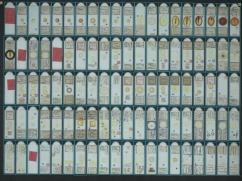 A photograph of a tray of microscope slides with boxes round each slide specimen.