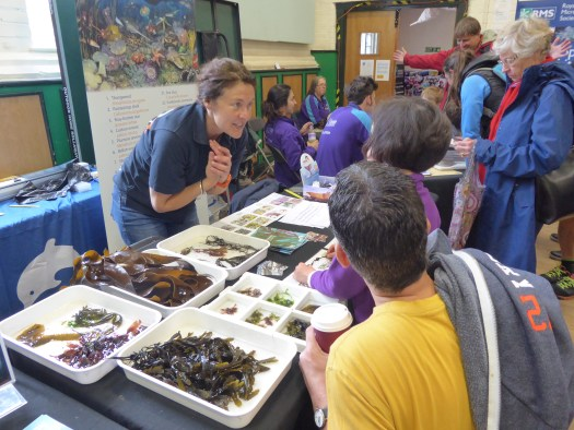 Photo showing a member of the Museum staff standing behind a table with trays of different seaweeds on top of it, leaning forward to talk with a child and their family stood in front of the table.
