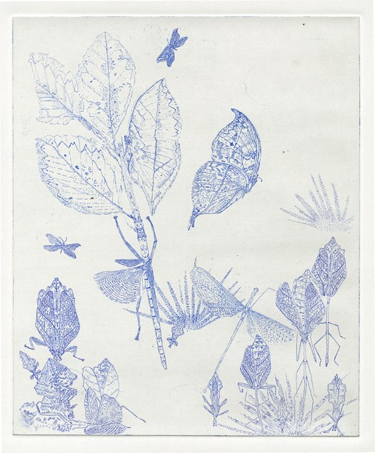 fig.16.leaf-blue72