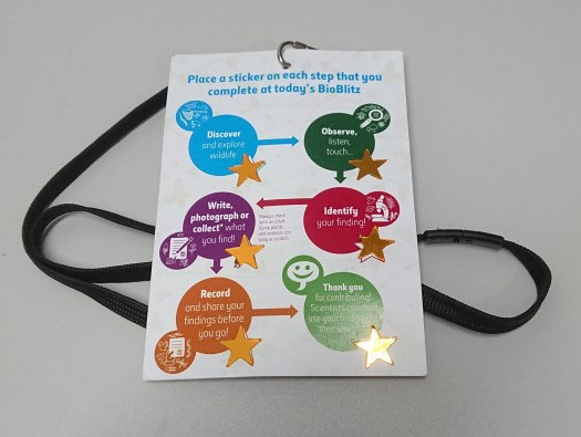 BioBlitz Activity Card