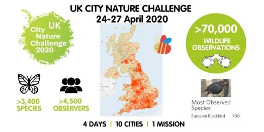 Summary of UK City Nature Challenge 2020